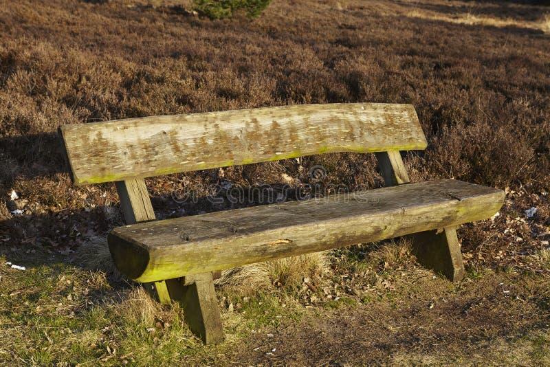 Bench en tierra en primavera fotos de archivo