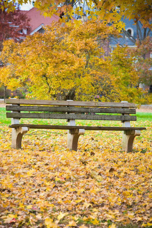 Bench and Fall Leaves in the Park. Bench surrounded by colorful autumn leaves in Ritter Park, one of the United States top ten city parks located in Huntington royalty free stock photo