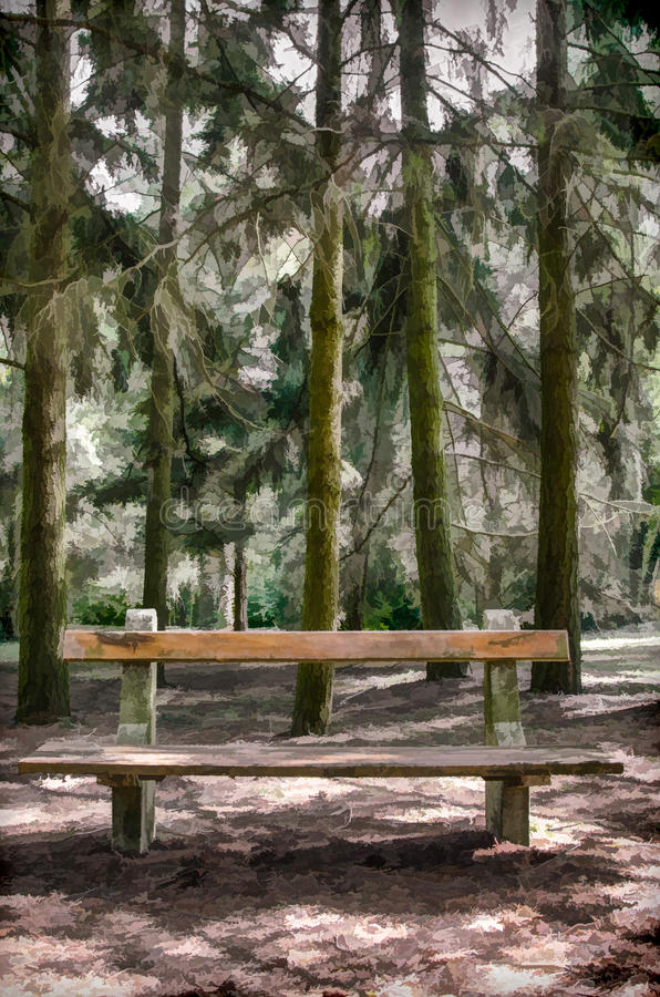 resting place - pine trees and wooden bench in the forest stock image