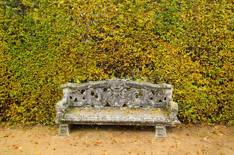 Download Bench garden background stock photo. Image of life, relax - 22776242