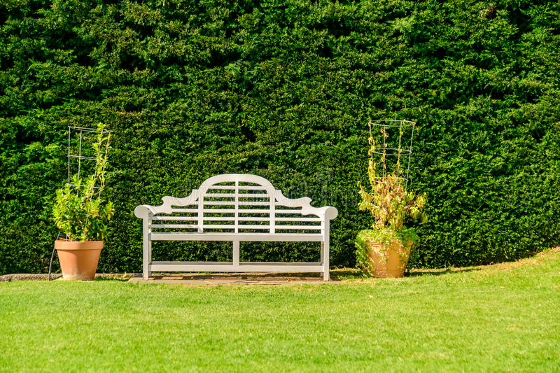 Bench with green pine bush. On the background stock image