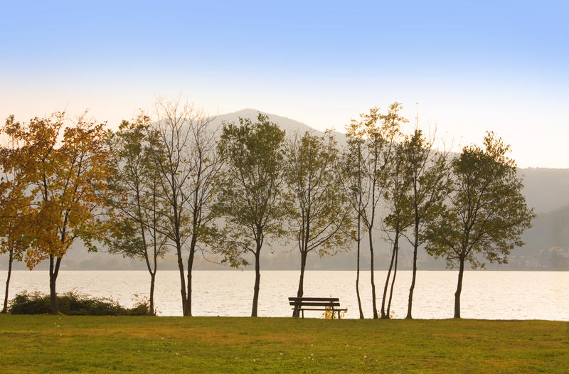 Bench by the lake stock photos