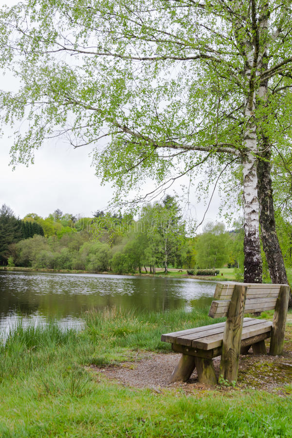 The bench of the lake royalty free stock photo