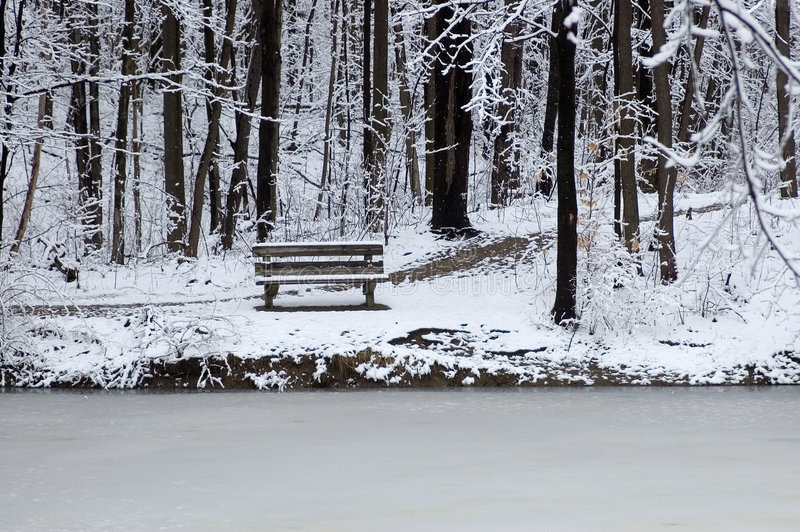 Download Bench at lake's edge stock image. Image of bank, frozen - 75603