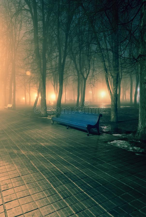 Bench in misty city park at night. By the light of street lamps. Natural winter autumn background royalty free stock images