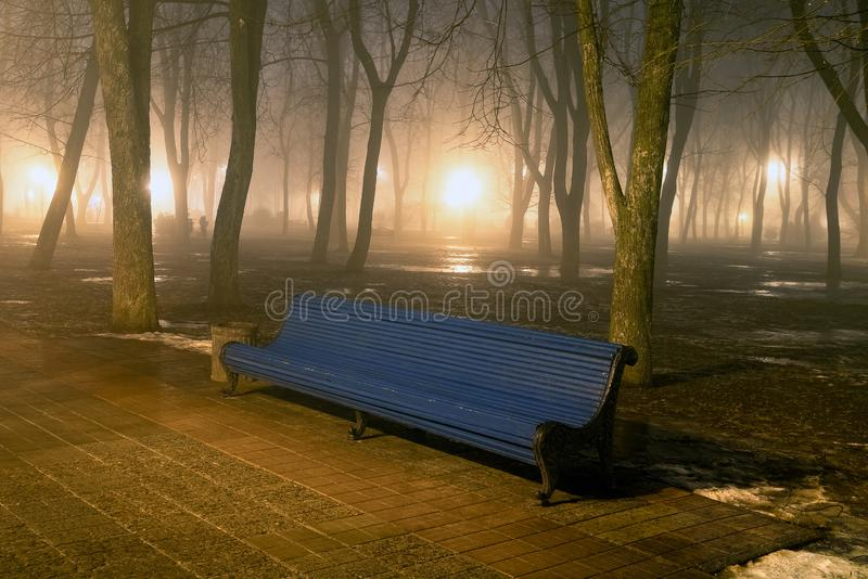 Bench in misty city park at night. By the light of street lamps. Natural winter autumn background stock photo