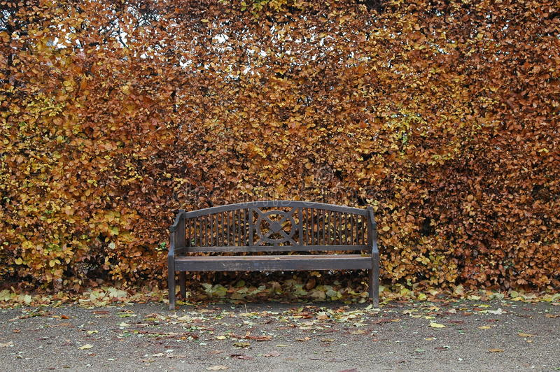 a bench in nature in southern France stock photography