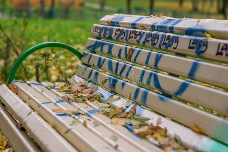 Bench nel parco di autunno coperto ed ornato con le iscrizioni ed i graffiti fotografia stock