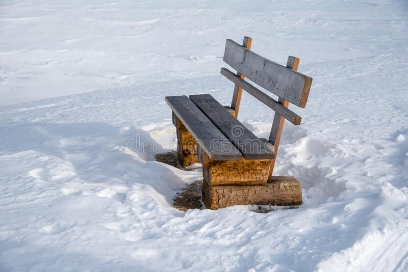 Bench next to a hiking trail royalty free stock image