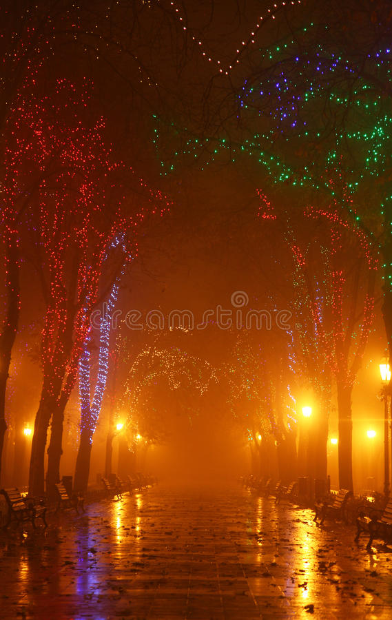 Download Bench In Night Alley With Lights Stock Photo - Image: 11773252