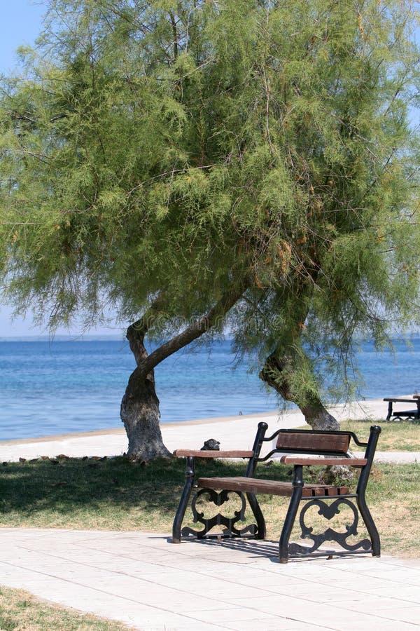 Bench no parque ao lado do mar e da praia imagens de stock