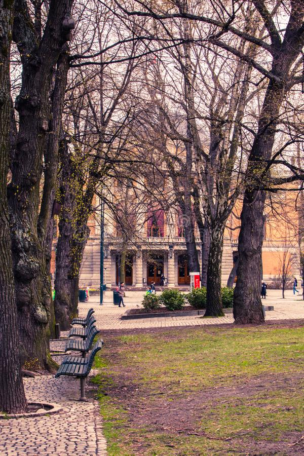 Bench park downtown oslo cobble stones trees stock image