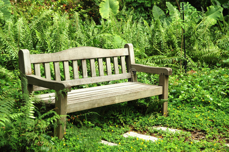 Download Bench By The Park stock photo. Image of green, thick, nature - 100706