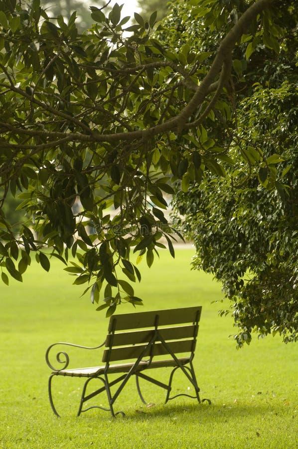 Bench in a park stock photos