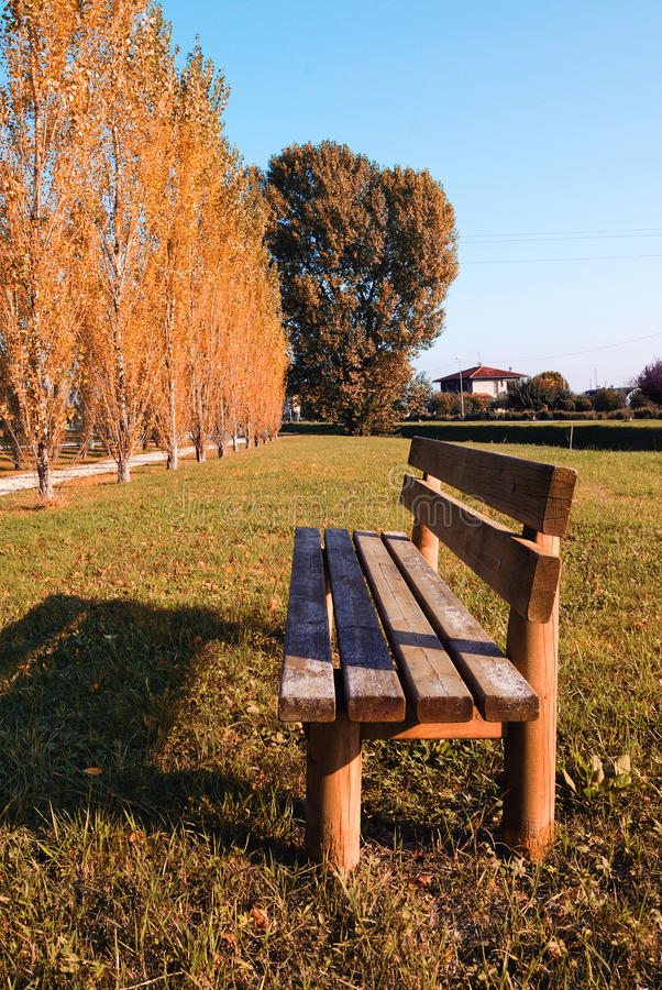 Download Bench In The Park Stock Image - Image: 17171351