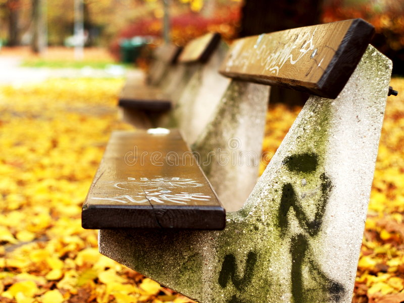 Download Bench in Park stock photo. Image of bench, graffiti, wooden - 9232758