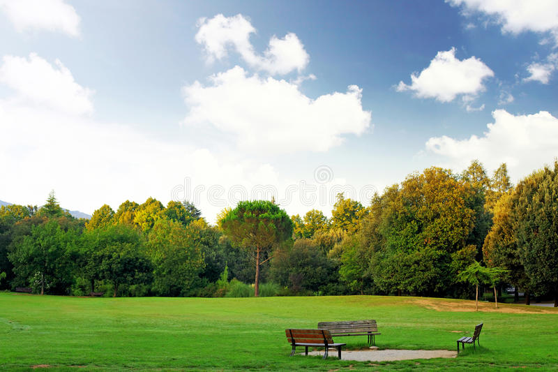 The bench in the park during early spring day royalty free stock image