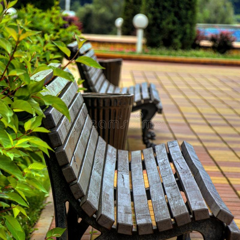 The bench in the park royalty free stock photos