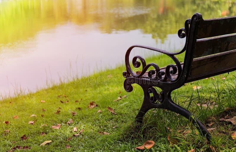 Bench in park near marsh royalty free stock photos