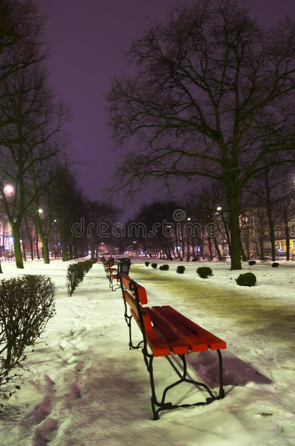 Bench in park at night. Bench in winter park at night in Slupsk, Poland royalty free stock images