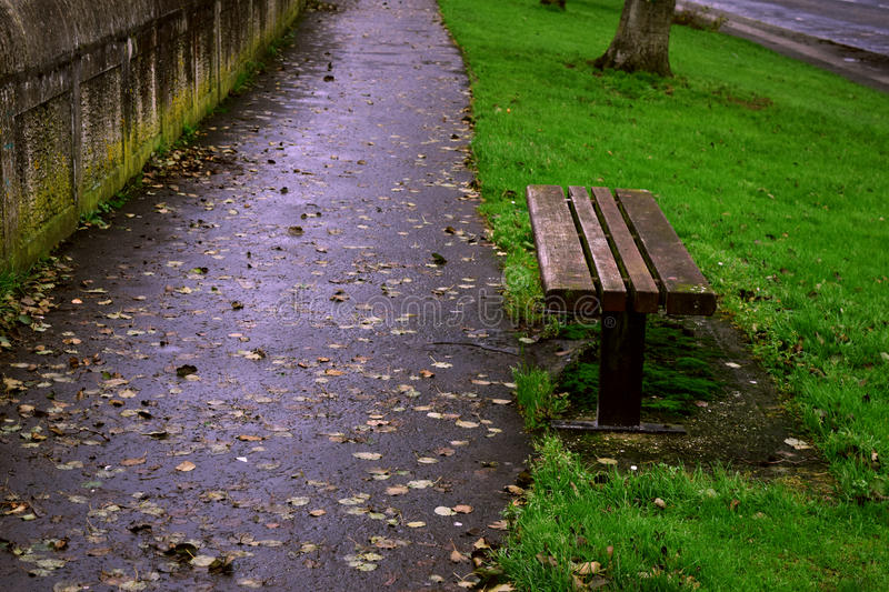 A bench in the park stock images