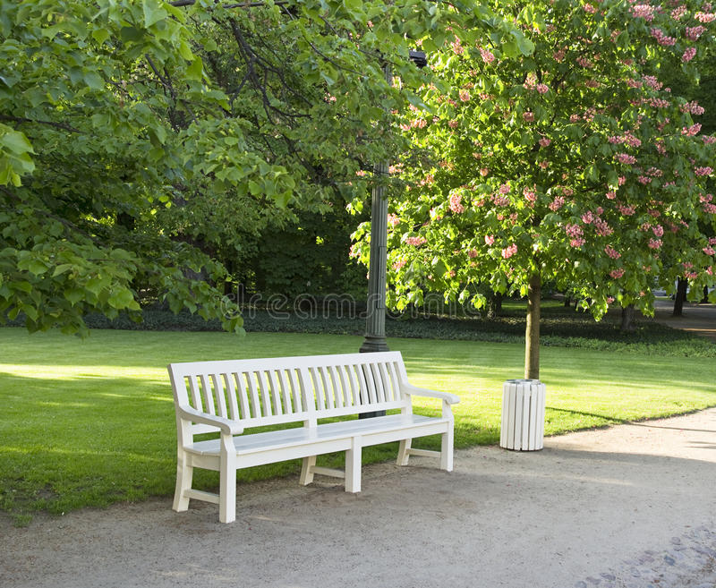 Bench in the park stock images