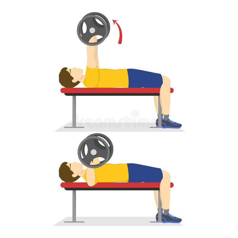 Bench press exercise for chest. Man doing workout. With barbell. Bodybuilder in the gym. Isolated vector illustration in cartoon style stock illustration