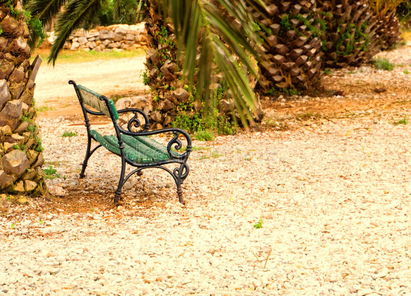 Bench at the sea 136. With palm trees royalty free stock image