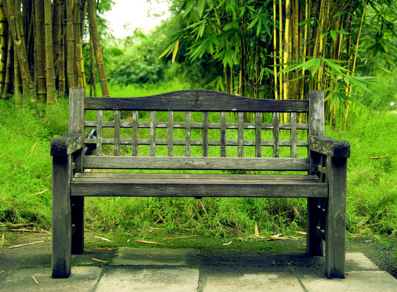 The Bench stock photography