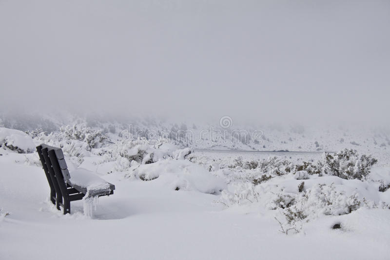 Download Bench in snow stock image. Image of mystical, contrast - 12271307