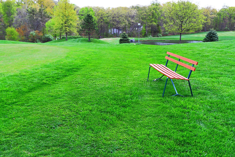 Spring Park. With bench on green meadow royalty free stock photos