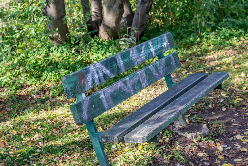 bench trä fotografering för bildbyråer