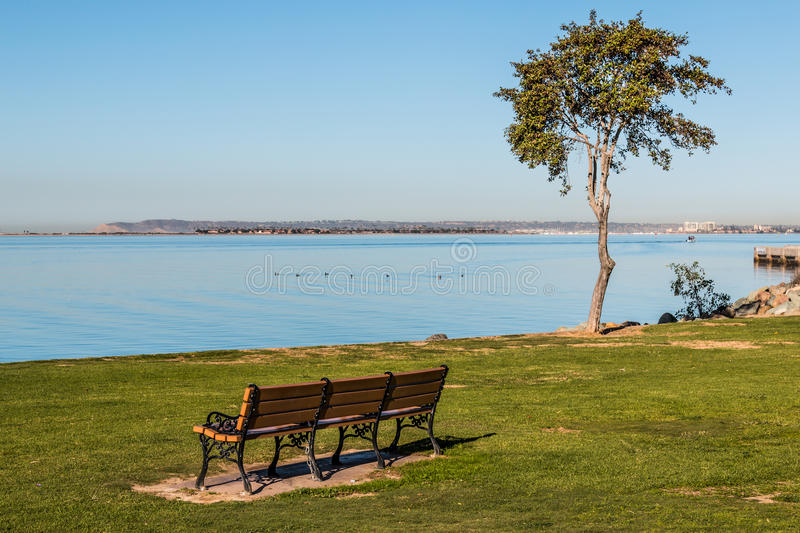 Bench and Trees Facing San Diego Bay. Bench and tree facing San Diego Bay at the Chula Vista Bayfront park, with Point Loma at the horizon line royalty free stock photos