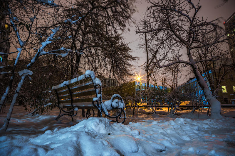 Bench and trees in the snow at night royalty free stock image