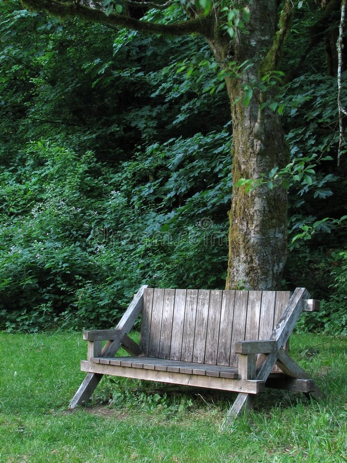 Free Bench Under Tree Royalty Free Stock Image - 5087356