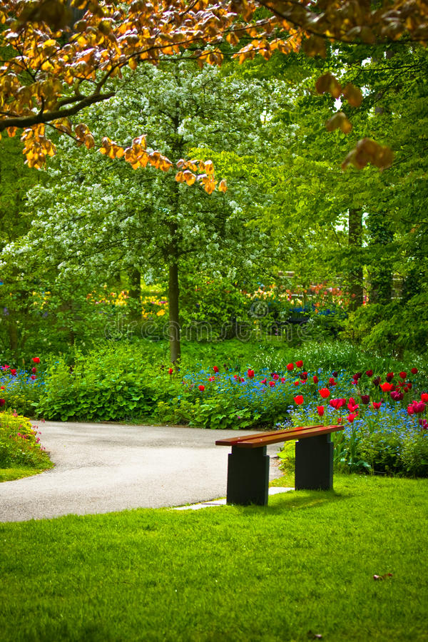 Download Bench Under A Tree With Flowers In A Park Stock Photo - Image: 14857596