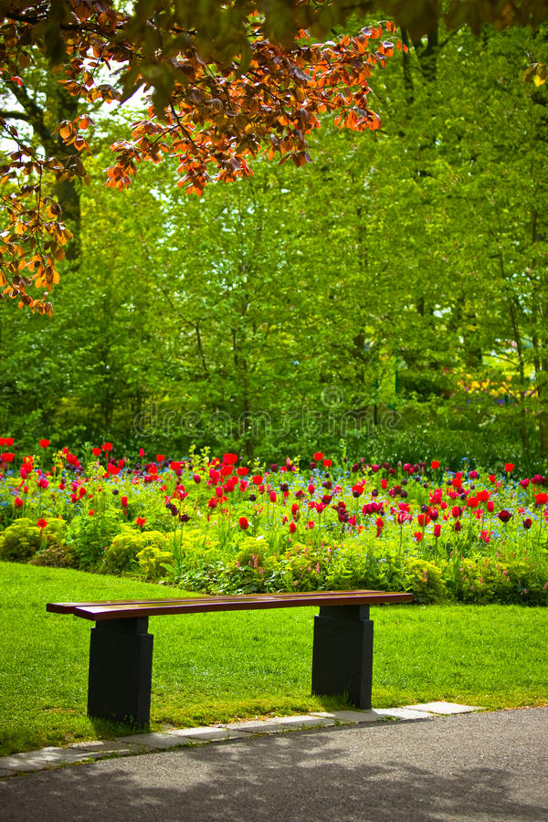 Download Bench Under A Tree With Flowers In A Park Stock Image - Image: 14857621
