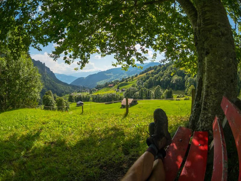 Bench under a tree on a hill. Mountain village at background. Switzerland summer landscape stock images