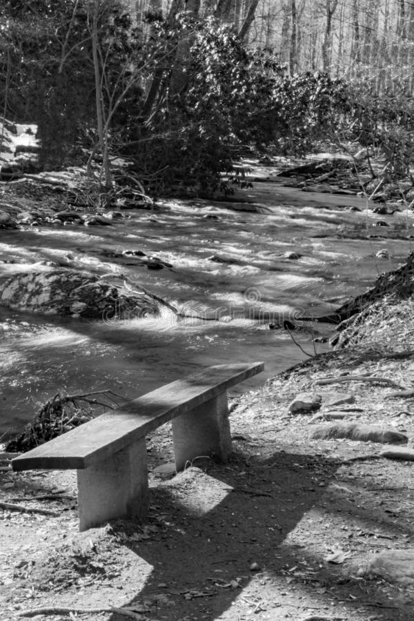 Bench by a Wild Mountain Trout Stream. A black and white image of a bench by wild mountain trout stream located in the Rock Castle Gorge located in the Blue stock image