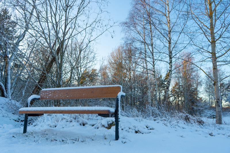 Bench in the woods near Stockholm. Scandinavian winter. Swedish nature wallpaper. Background royalty free stock photos