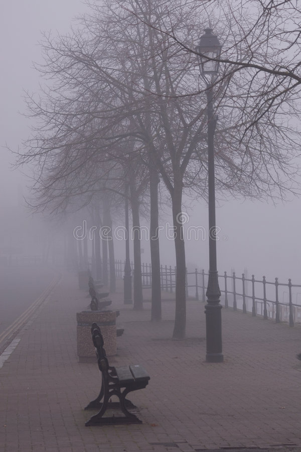 Benches in the fog royalty free stock photo