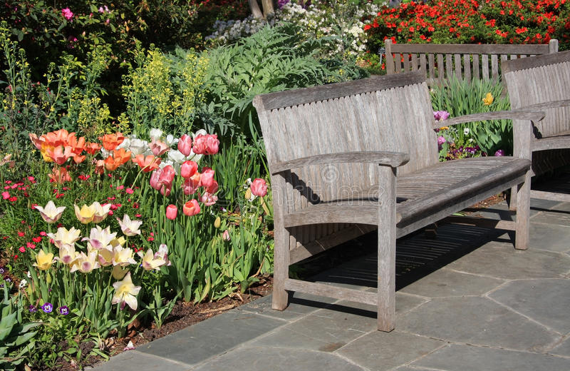 Download Benches in the garden stock image. Image of flower, gardening - 23997515