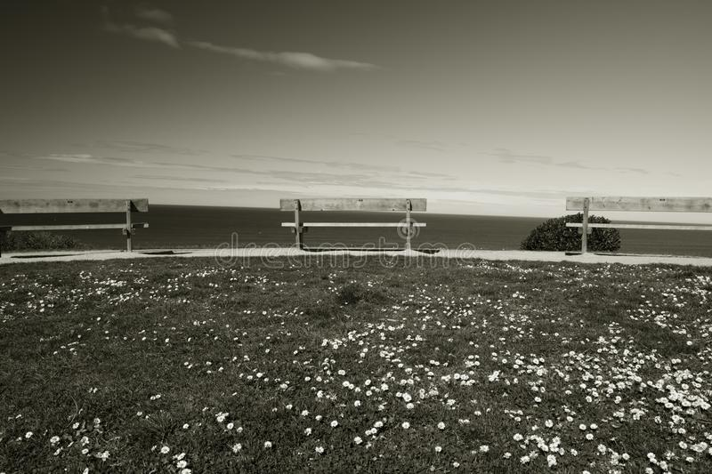 Benches in a line on a cliff above atlantic ocean in black and white, bidart, france stock photo
