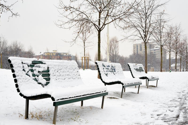 Download Benches in the park stock photo. Image of frosty, frost - 23148968