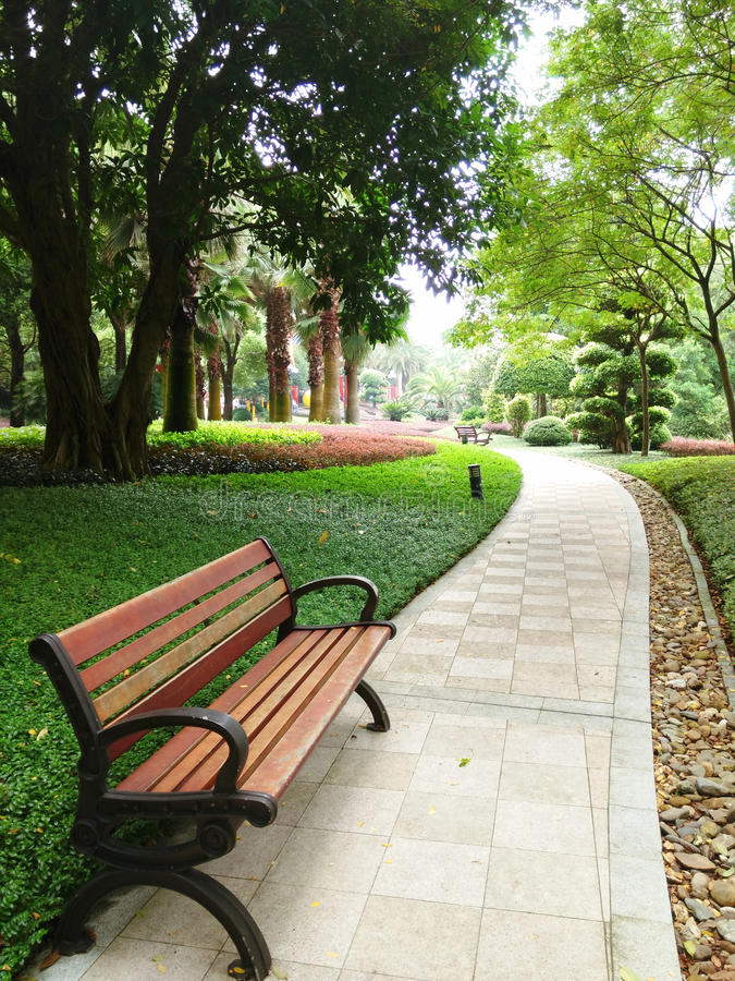 Benches on the path royalty free stock photos