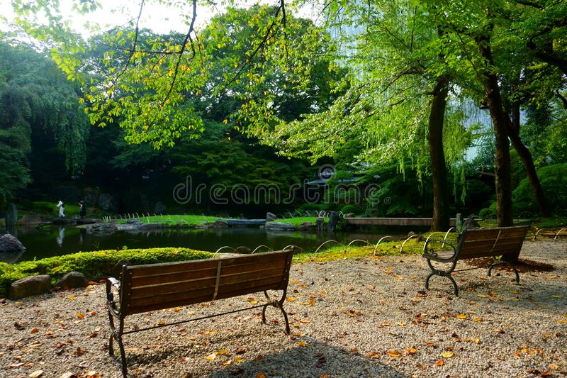 Benches by the pond in Japanese garden, Tokyo stock image