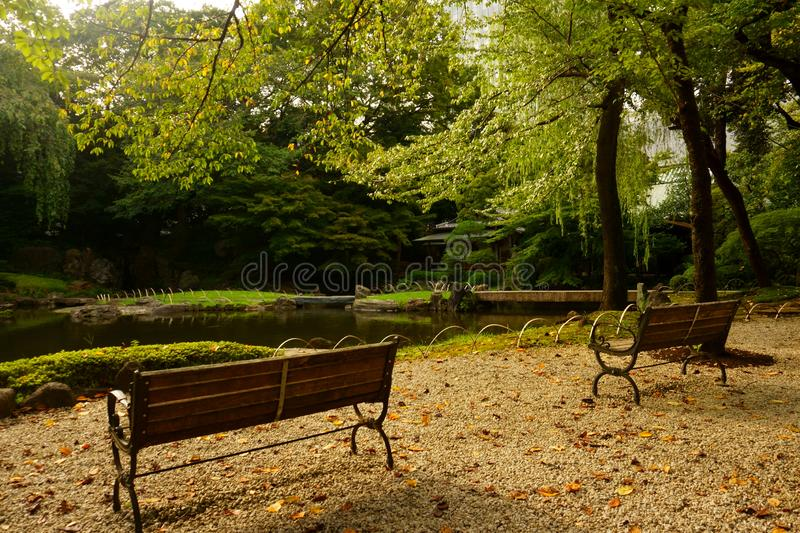 Benches by the pond in Japanese garden, Tokyo royalty free stock image