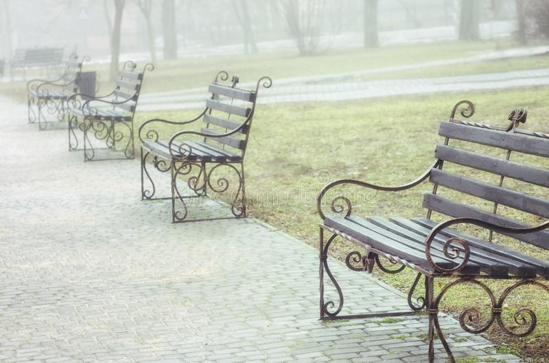 Benches in the spring park. Photo close up.  stock photography