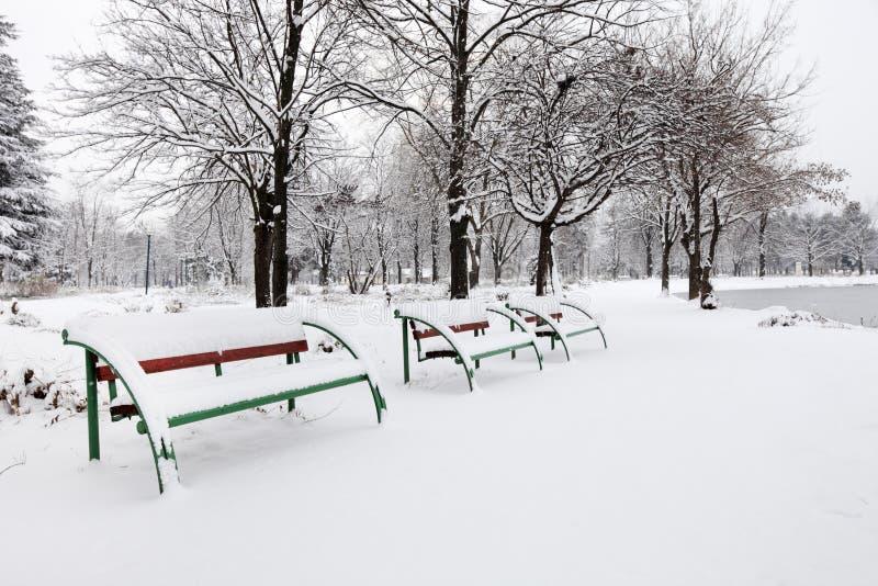 benches staden räknad parksnow arkivbilder
