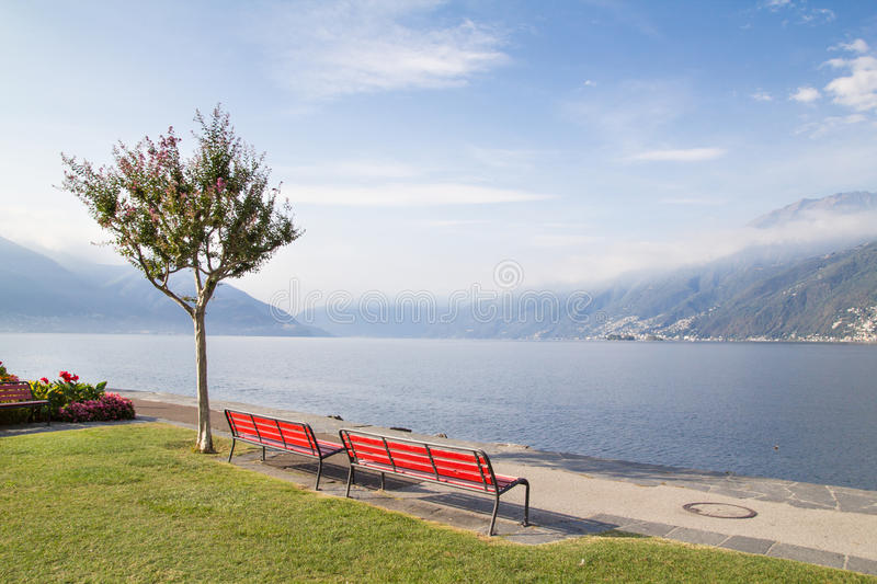 Benches and tree on the Swiss lake royalty free stock images